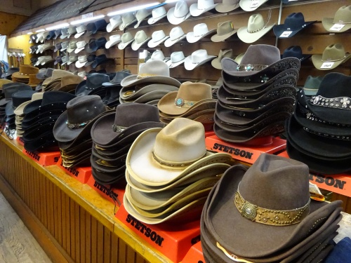 Stetson, F M Light & Sons, Steamboat Springs