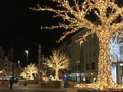 Trees decorated with gold lights on Maria-Theresien Straße